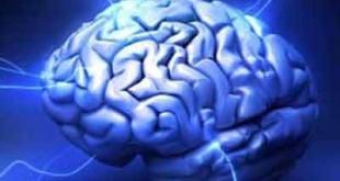 nootropic brain