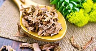 Rhodiola Rosea for male health